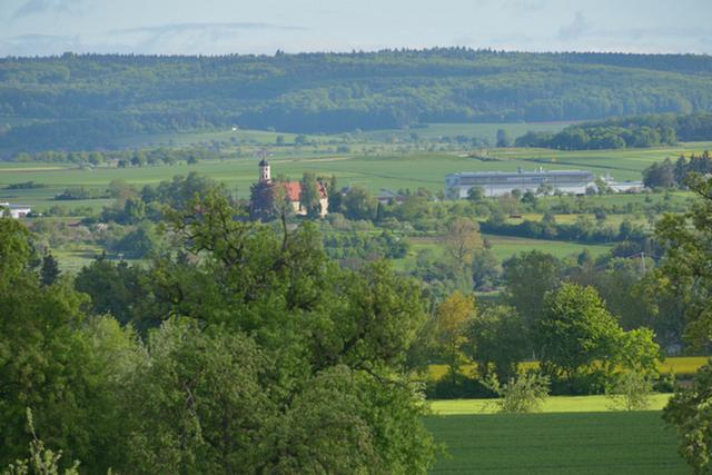Teil der Donauschleife