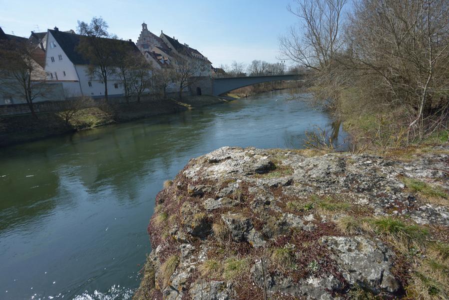 Schwemmstein an der Donau