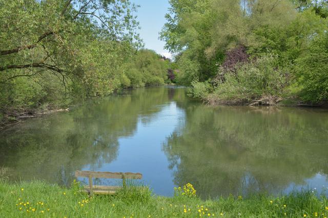 Donauflußarm mit Aussichtspunkt