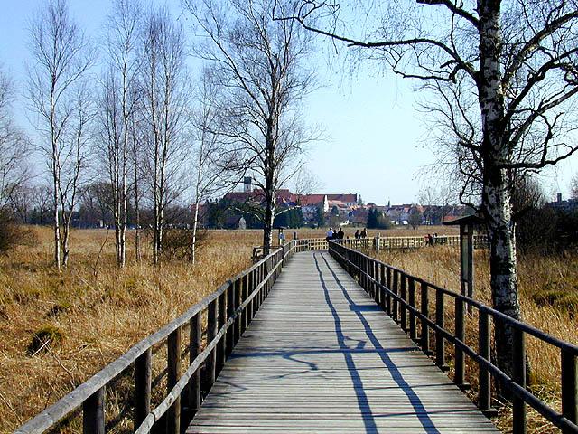 Wegbrücke in Bad Buchau, Federseee